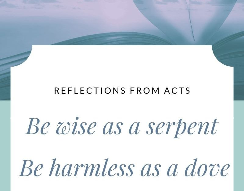 Be Wise as a Serpent, Be Harmless as a Dove